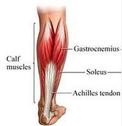 Calf Strains and Leg Pain Relief